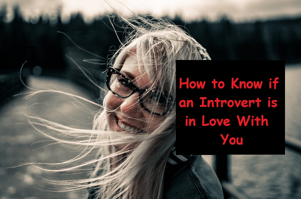 How to Know if an Introvert is in Love With You